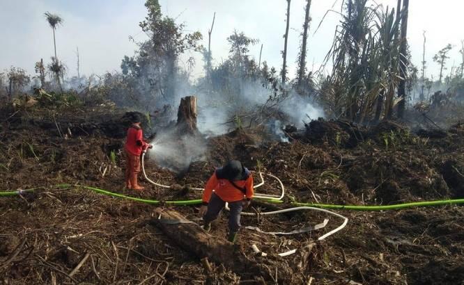 Lahan Terbakar, Polda Riau Tetapkan PT DSI Sebagai Tersangka