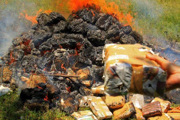 Ganja Kering Seberat 85,04 Gram Milik PS Dimusnahkan Polres Pelalawan