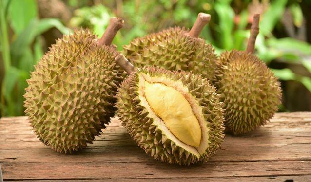 Misteri Mengapa Durian Miliki Bau Menyengat Akhirnya Terungkap